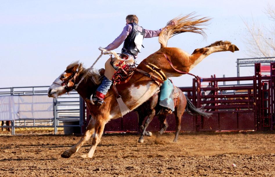 Bucking-Bronco-Rodeo-Texas