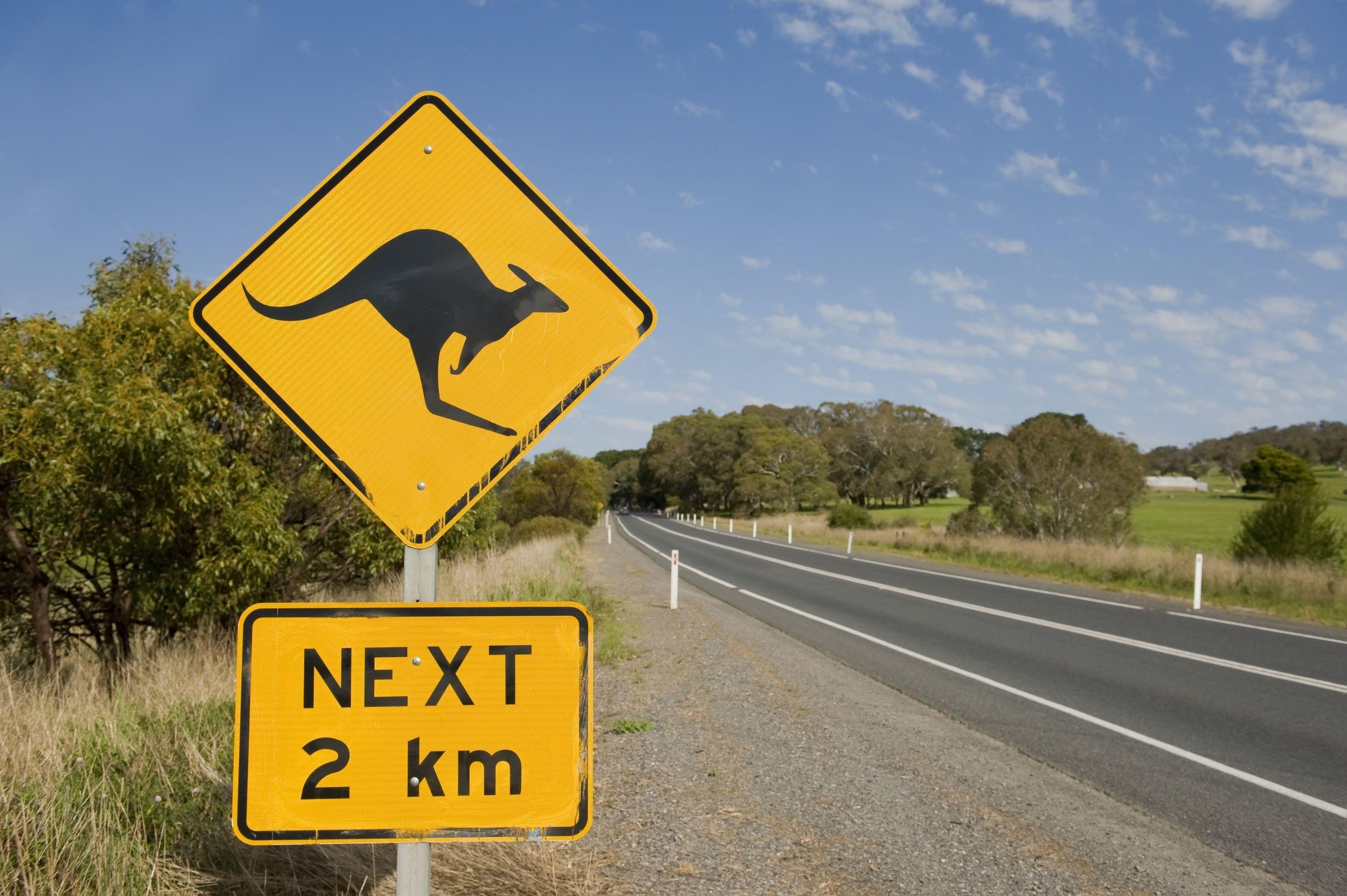 kangaroo-road-sign-australia