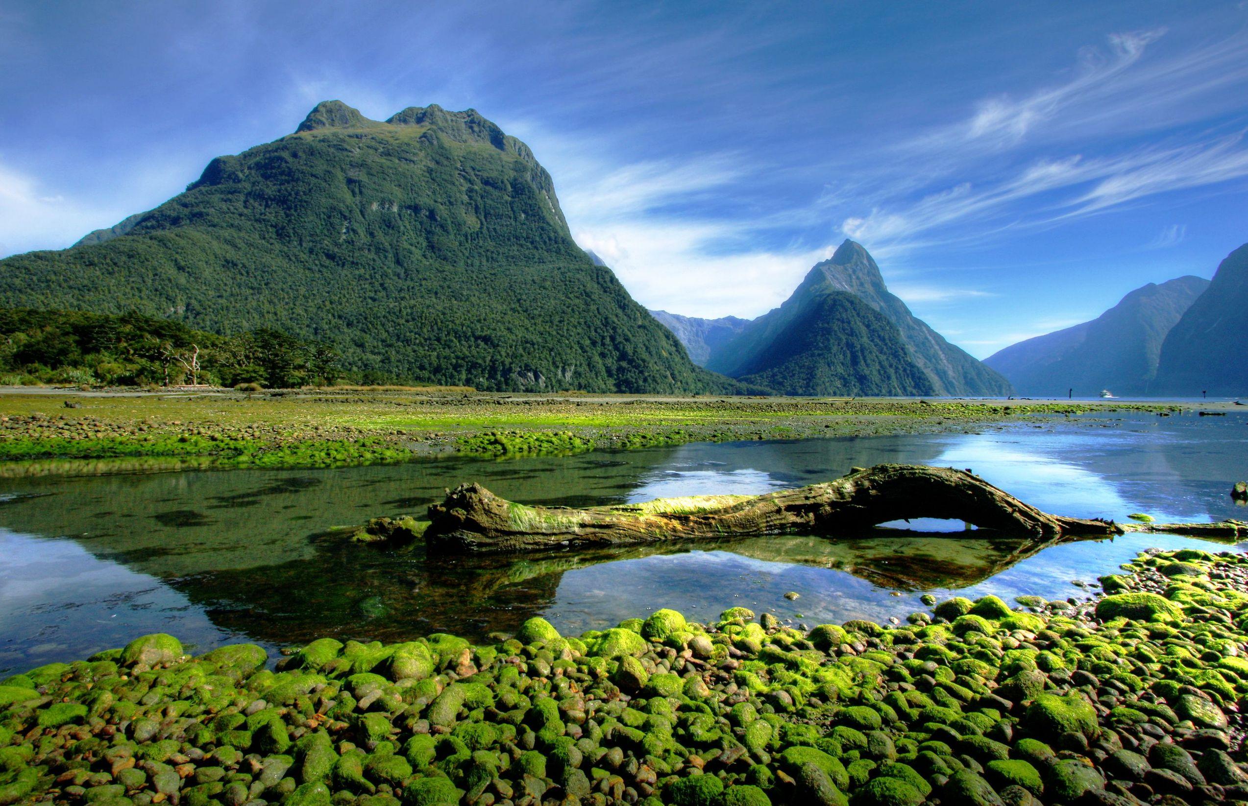 new zealand mossy lake 123rf