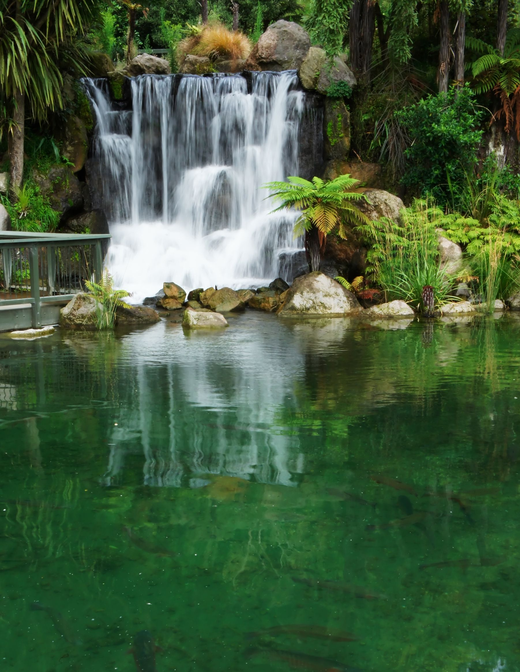 new zealand spring waterfall 123rf