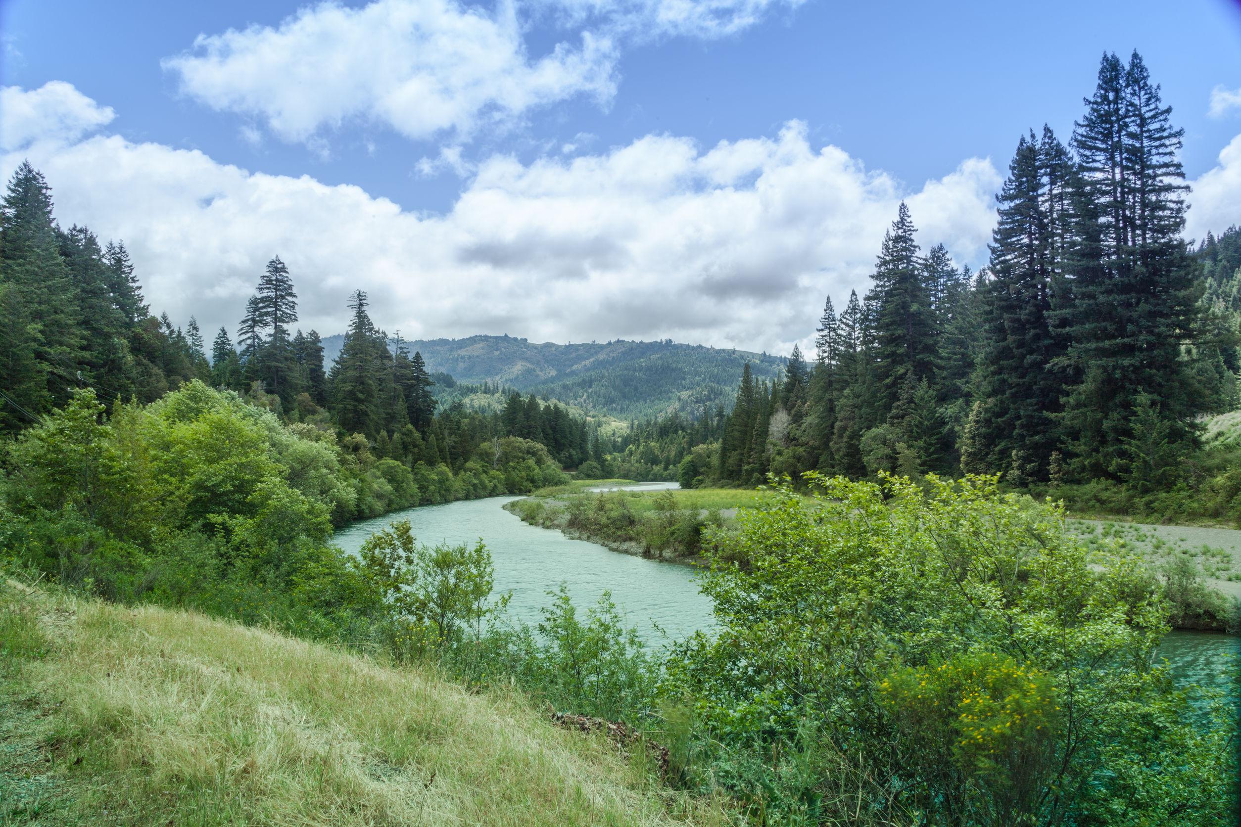 river-landscape-trees-california-usa