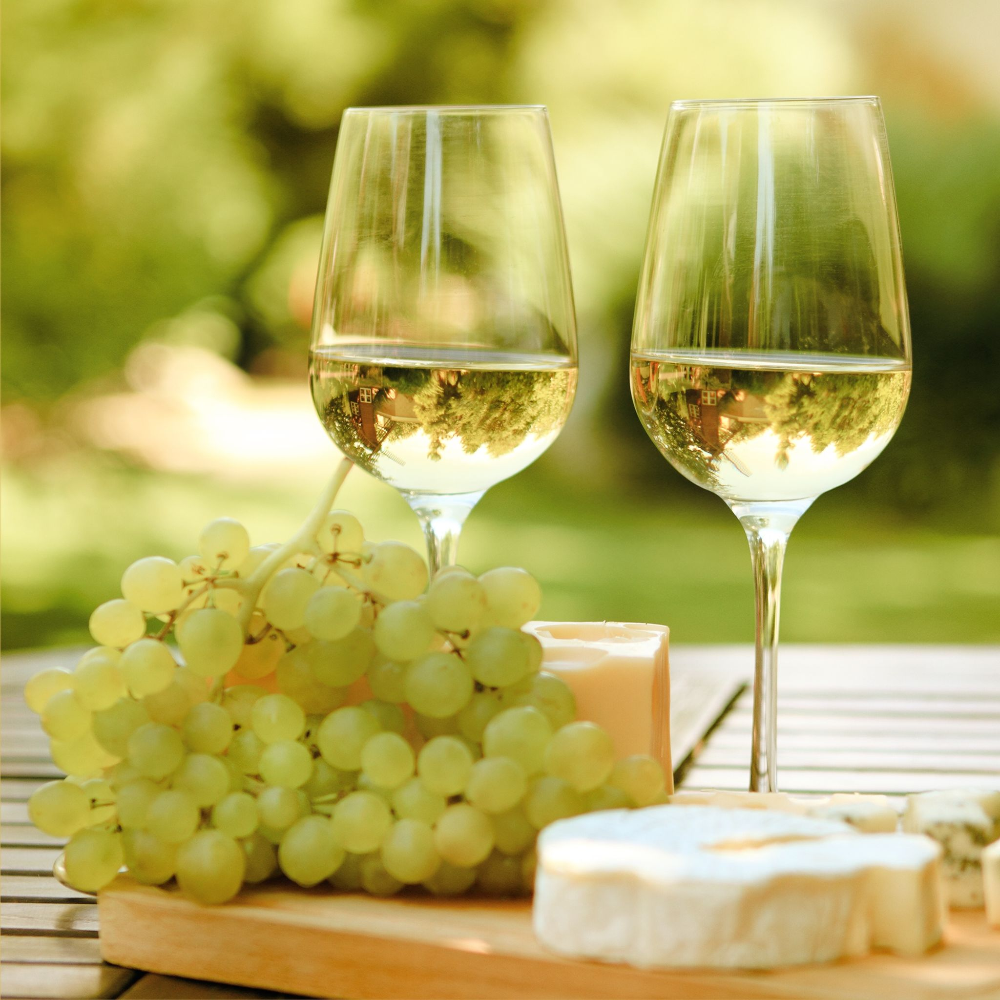australia white wine and cheese 123rf