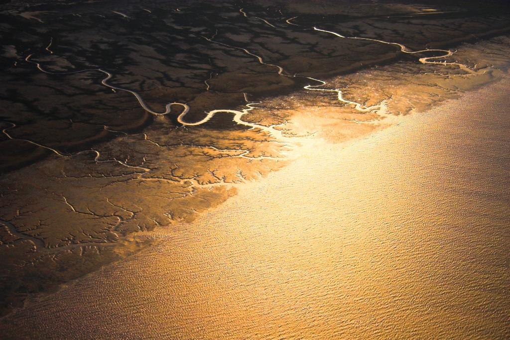 tundra-in-alaska