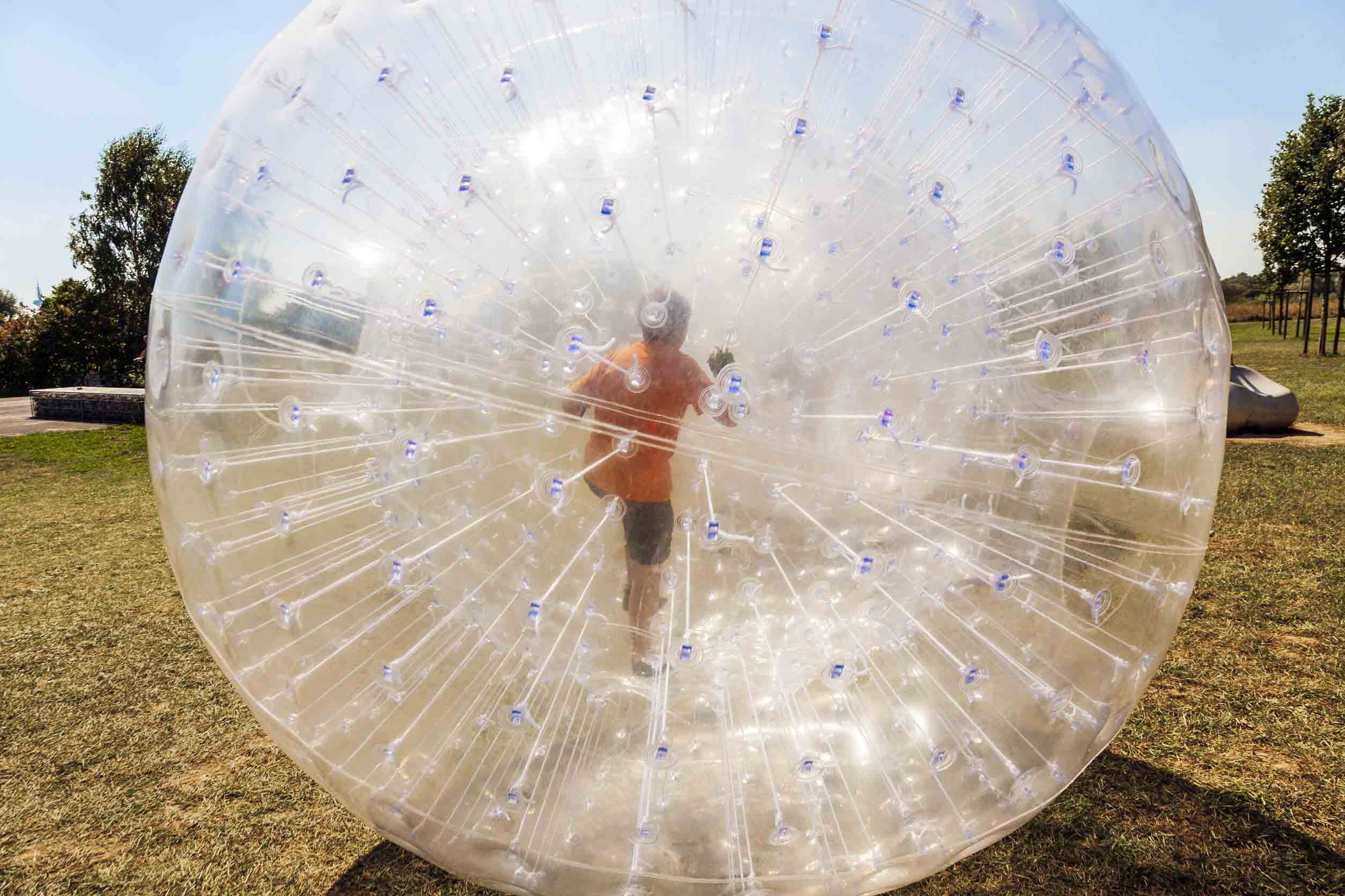 kid-in-zorb-new-zealand