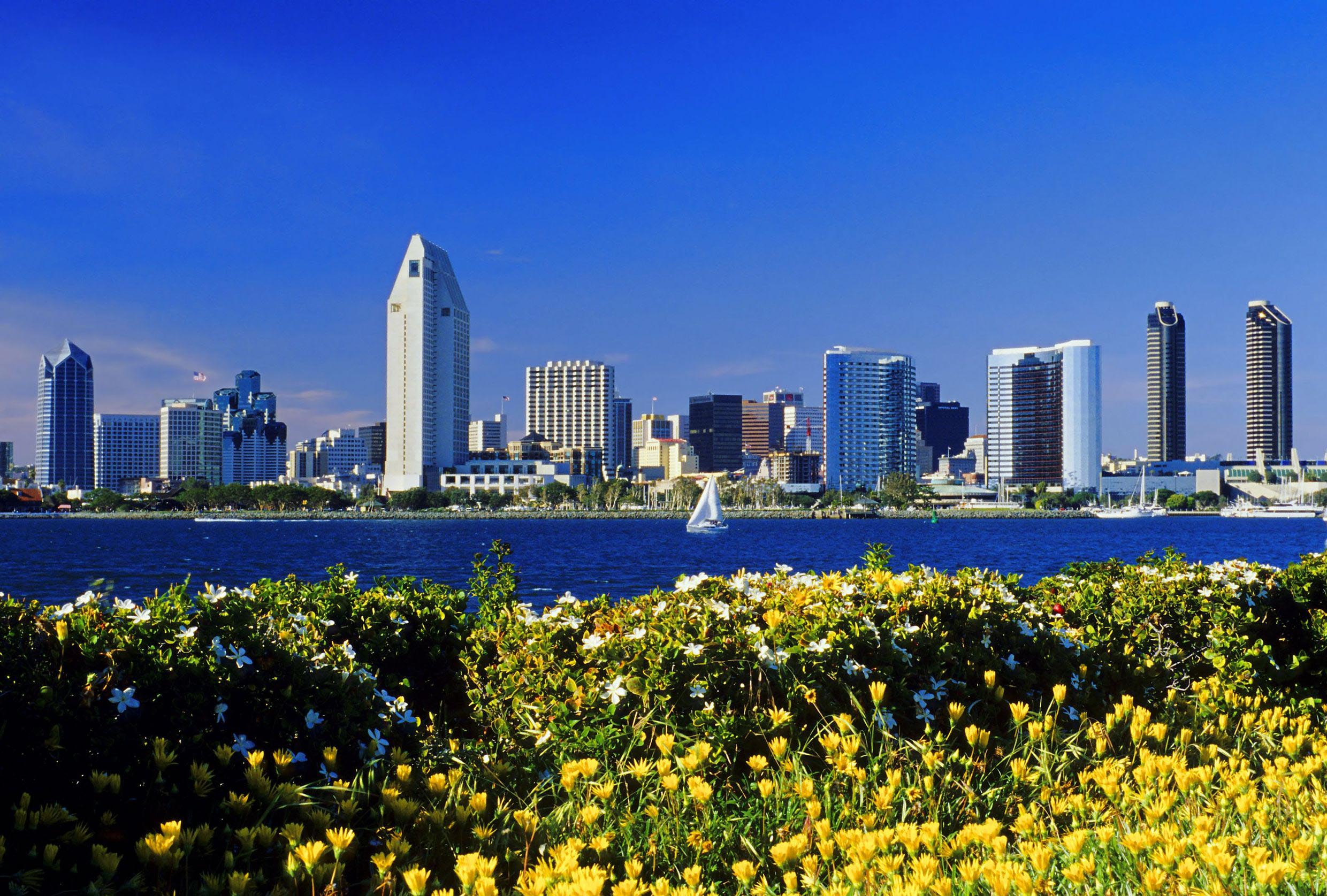 city-skyline-with-flowers-united-states