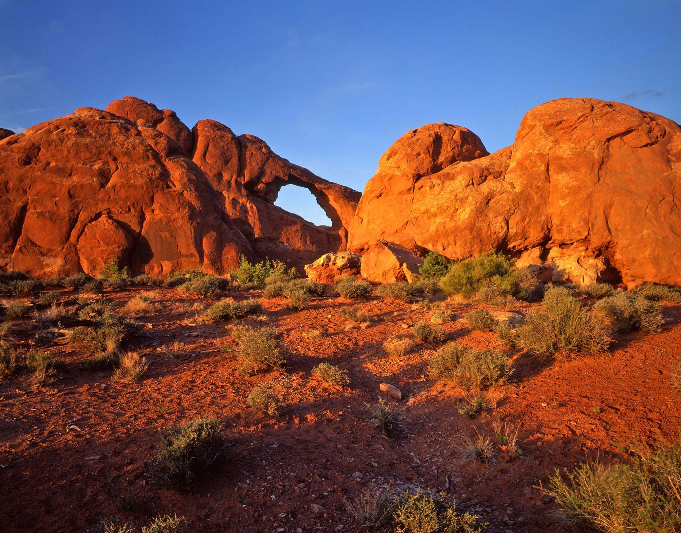 redrock-landscape-utah-usa