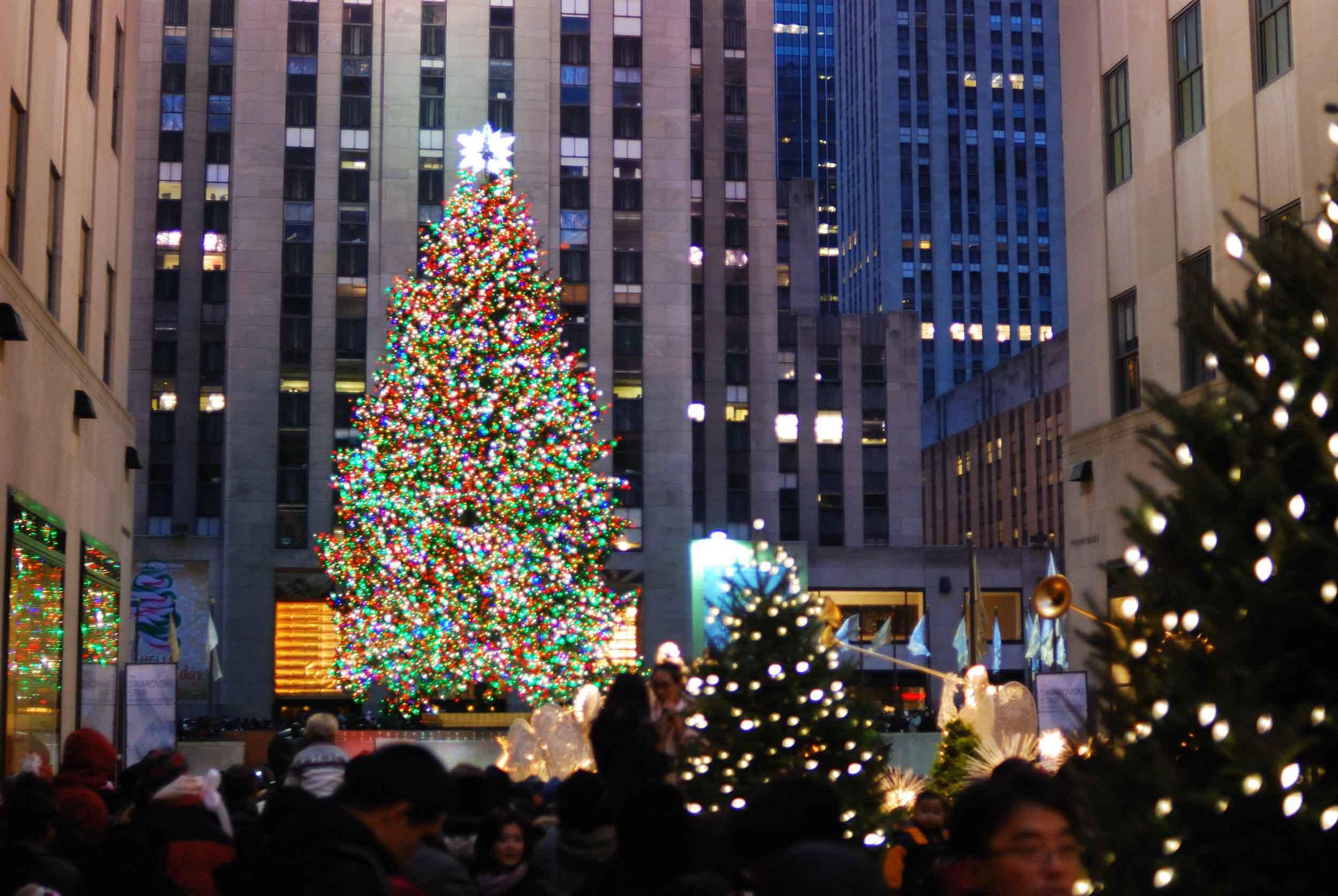 city-christmas-tree-new-york