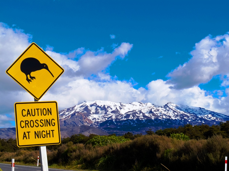 kiwi-crossing-sign-in-new-zealand