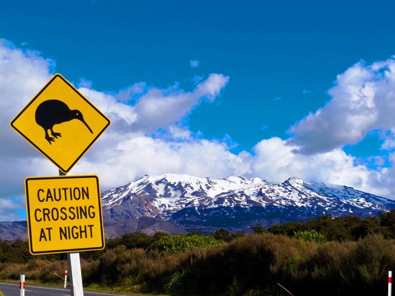kiwi-crossing-sign-in-new-zealand