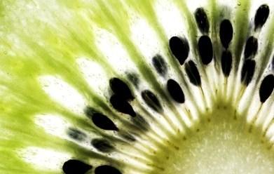 Close up of a Kiwi