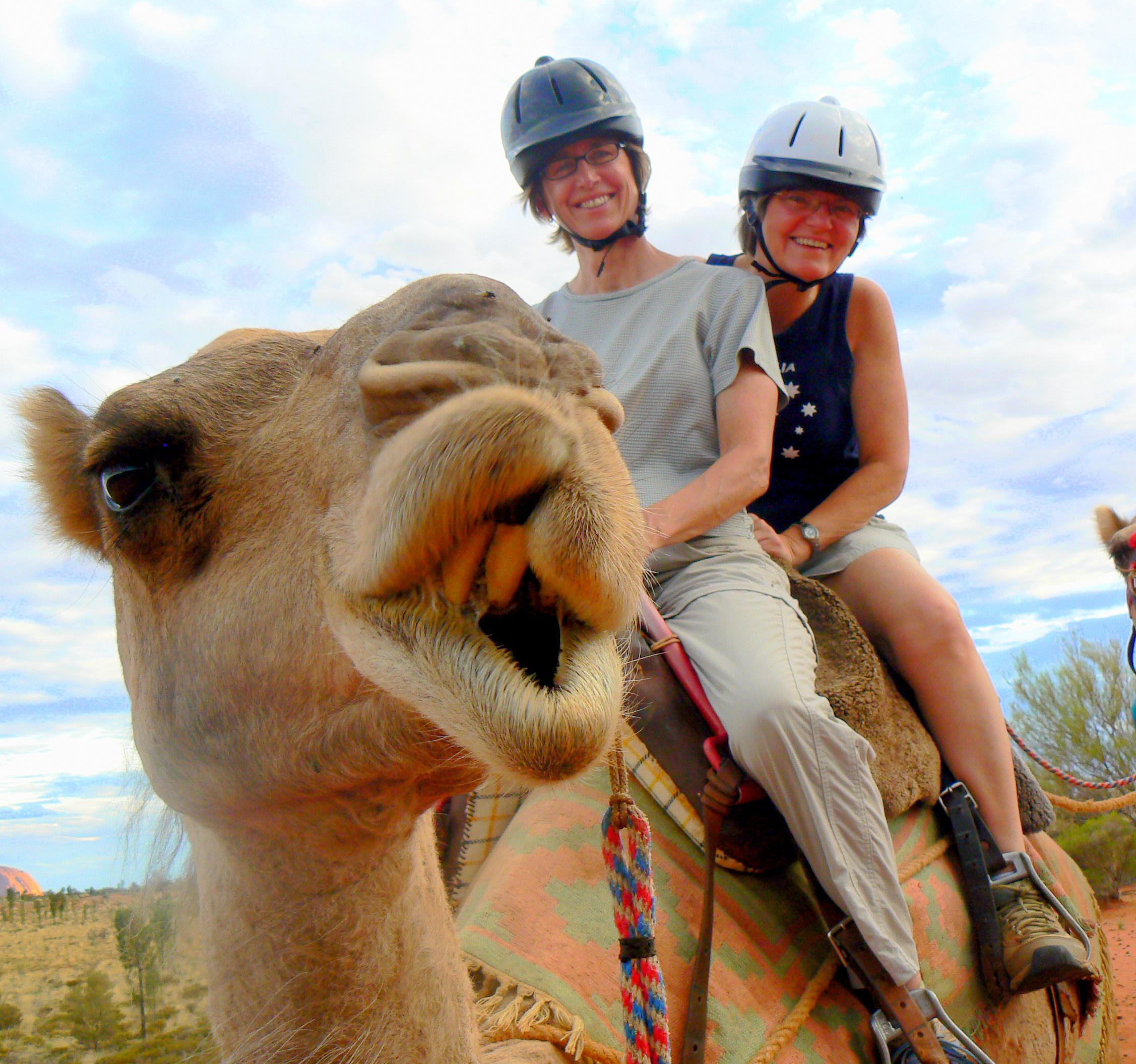 Camel ride near Uluru, Australia