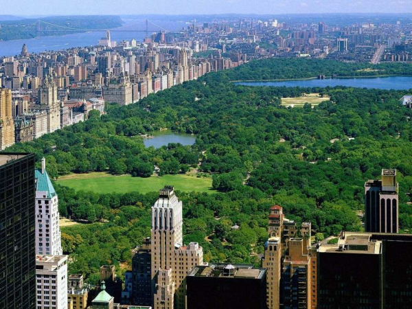 Central Park in New York City