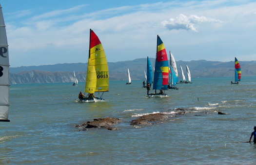 Sailing Hobie Cats in New Zealand