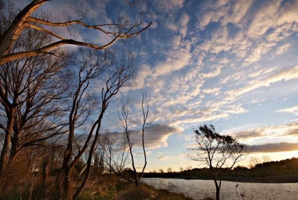 Te Araroa, along the Rangitikei River, Copyright Paul Bakker