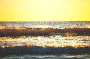 waves-in-virginia