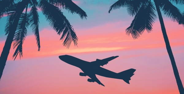 airplane-and-palm-trees-thinkstock