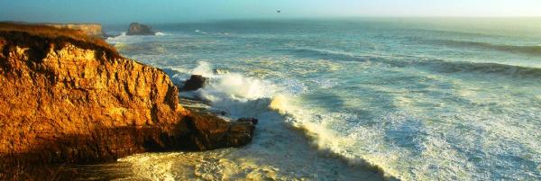 northern california coast with bird resized 600