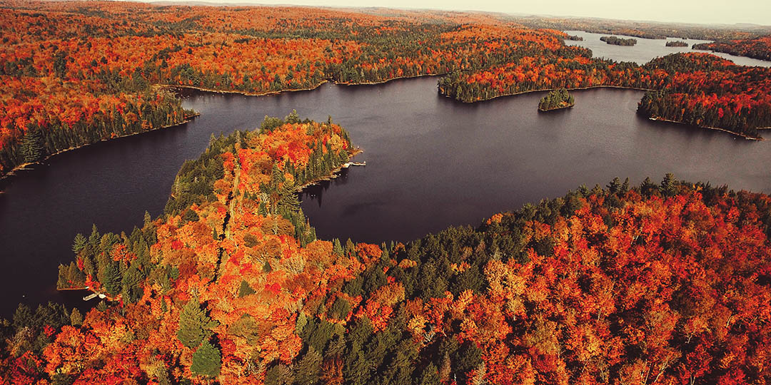 go-leaf-peeping-in-new-england-gmedical-istock.jpg