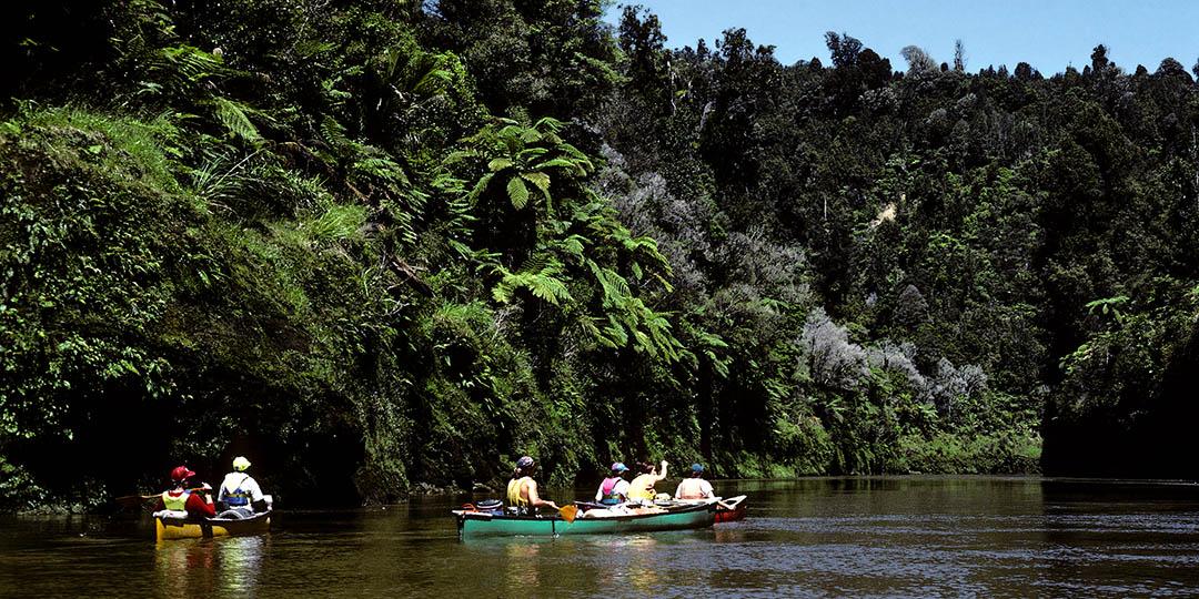 whanganui_river_gmedical_istock.jpg